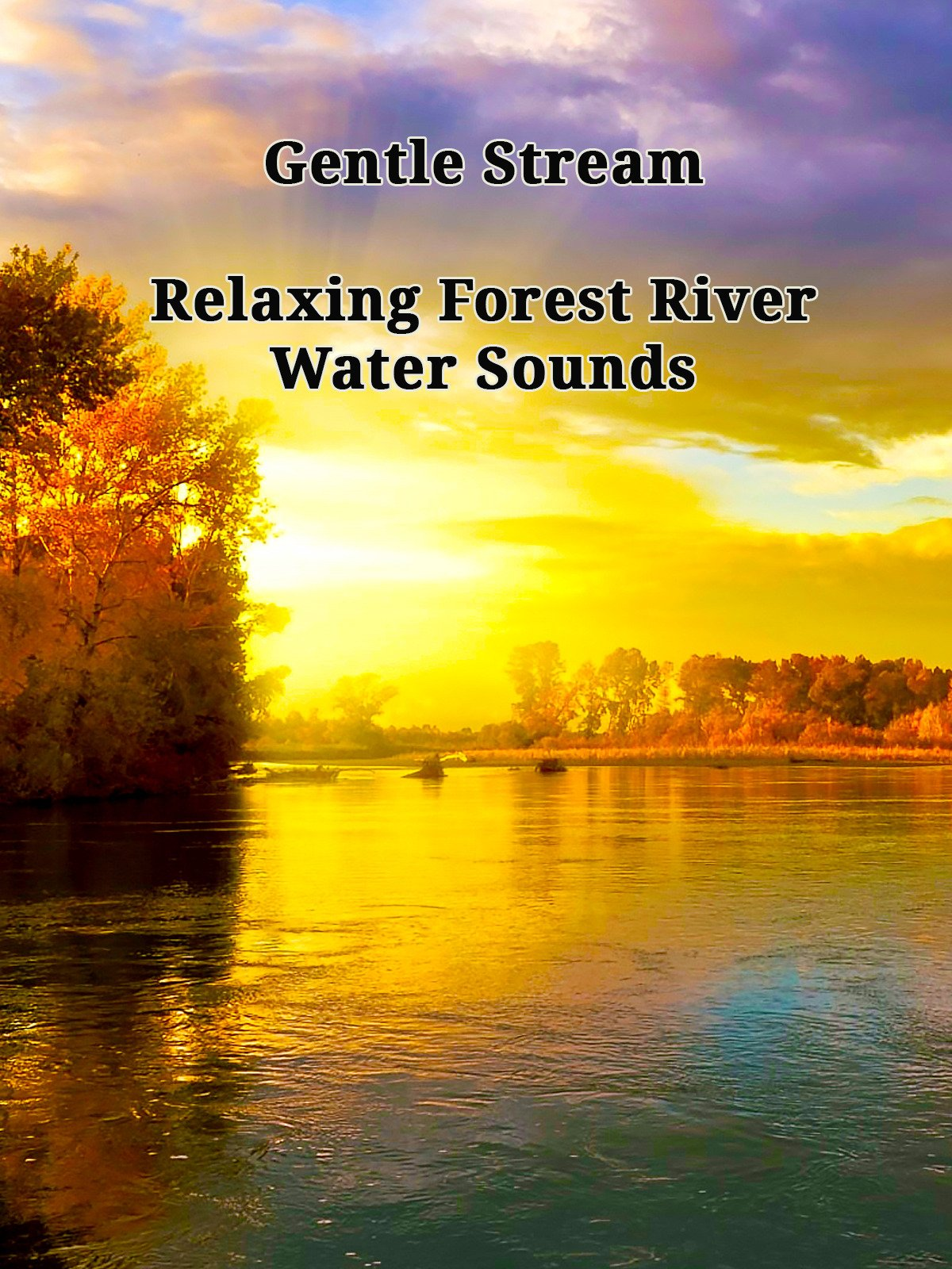 Gentle Stream: Relaxing Forest River Water Sounds on Amazon Prime Instant Video UK