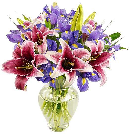 Stargazer Lilies & Iris Bunch | With Vase