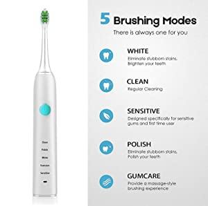 Sonic Electric Toothbrush for Kids and Adults, 5 Modes with 2 Min Build in Timer, Ultrasonic Toothbrush with 4 Brush Heads Usb Charging Power Toothbrush, Dentist Recommended