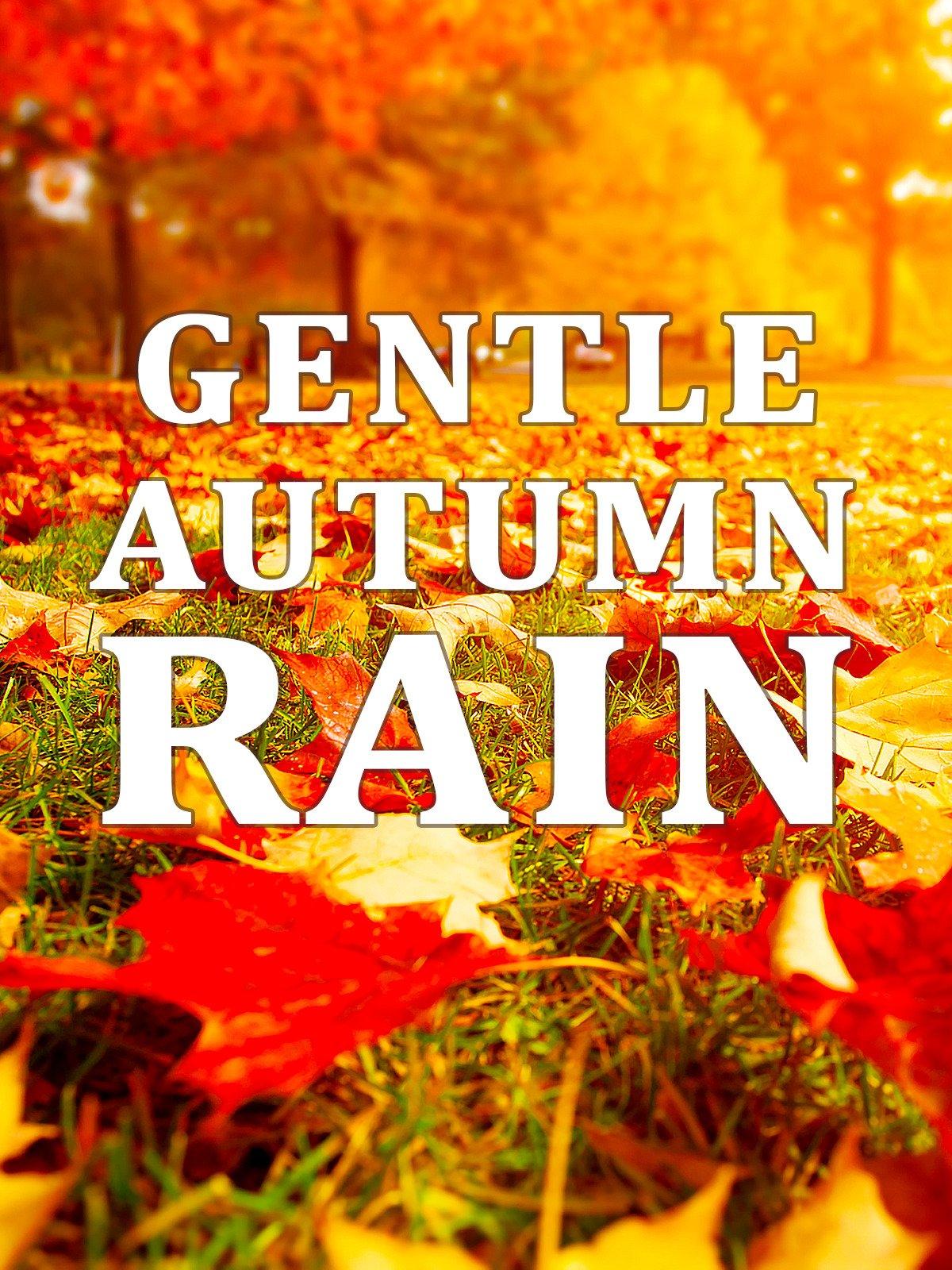Gentle Autumn Rain