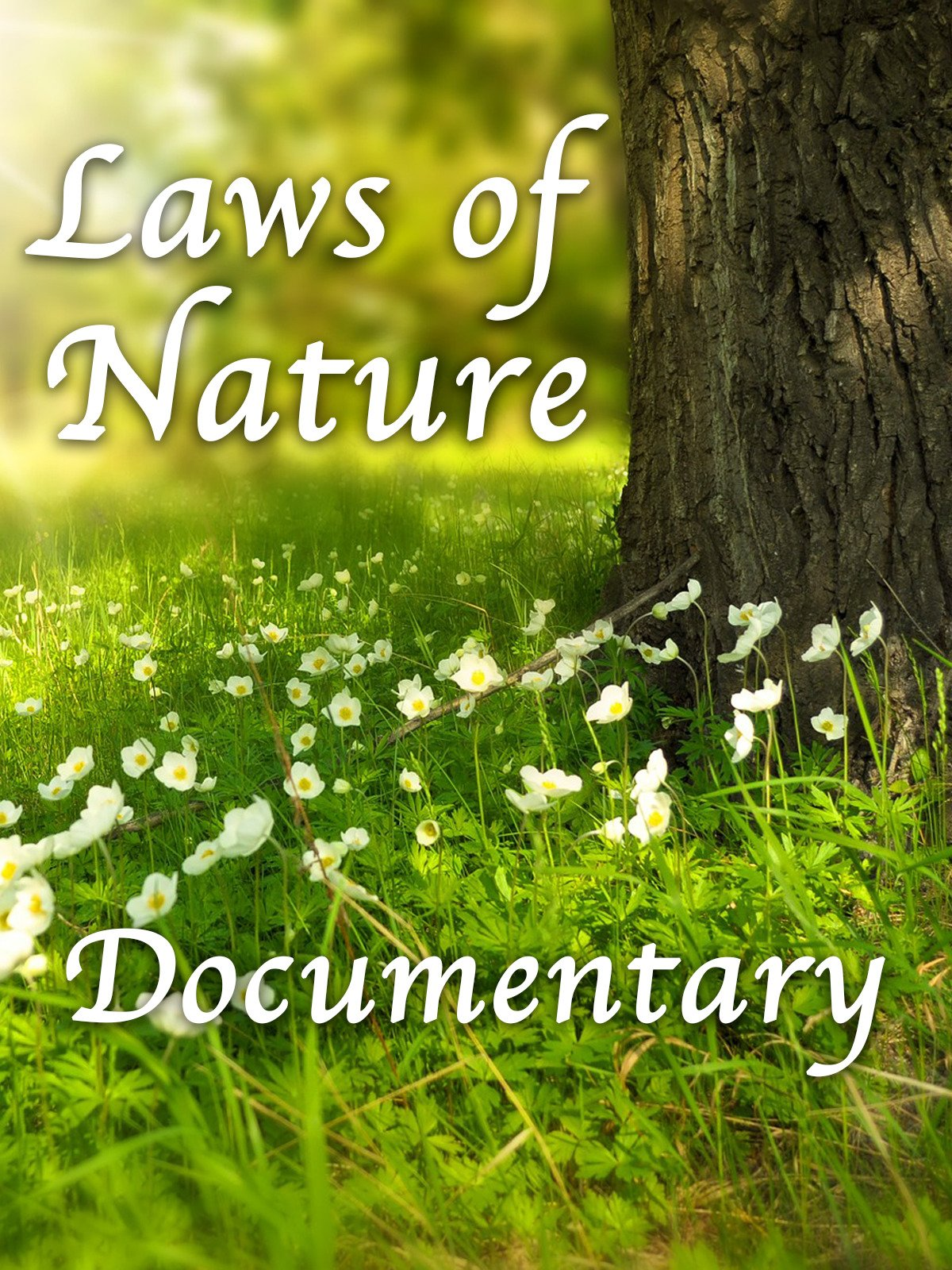 Laws of Nature Documentary