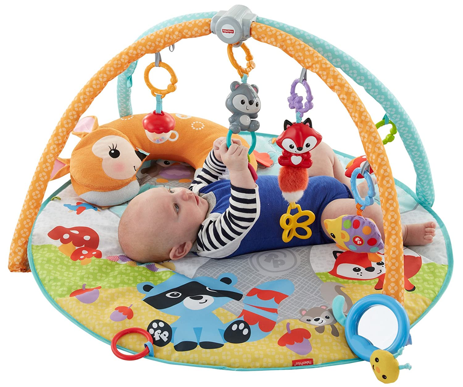 Fisher Price Moonlight Meadow Deluxe Play Gym
