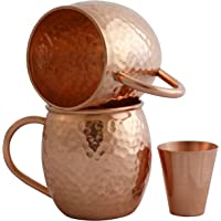 2-Pack Willow & Everett Moscow Mule Copper Mugs with Shot Glass