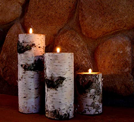 Real Birch Log Candle Holder Set by BINESHII