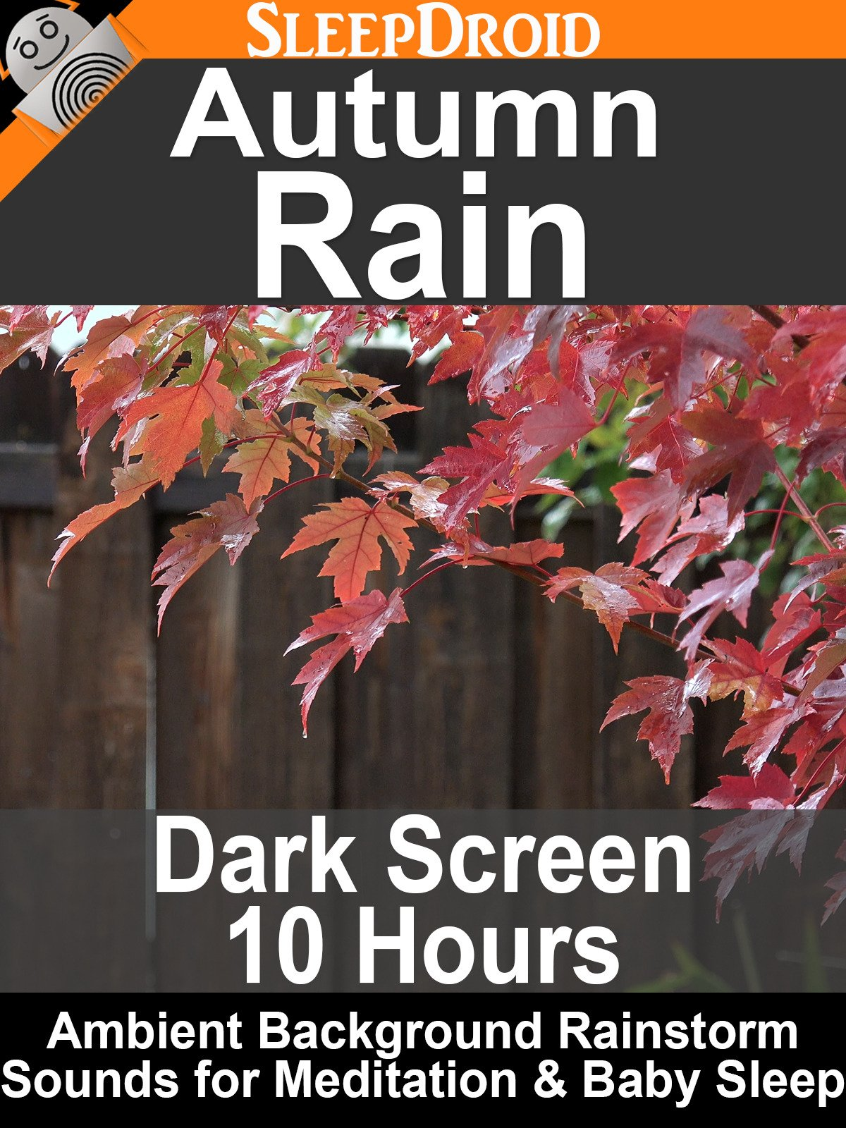 Autumn Rain, Dark Screen 10 Hours: Ambient Background Rainstorm Sounds for Meditation & Baby Sleep
