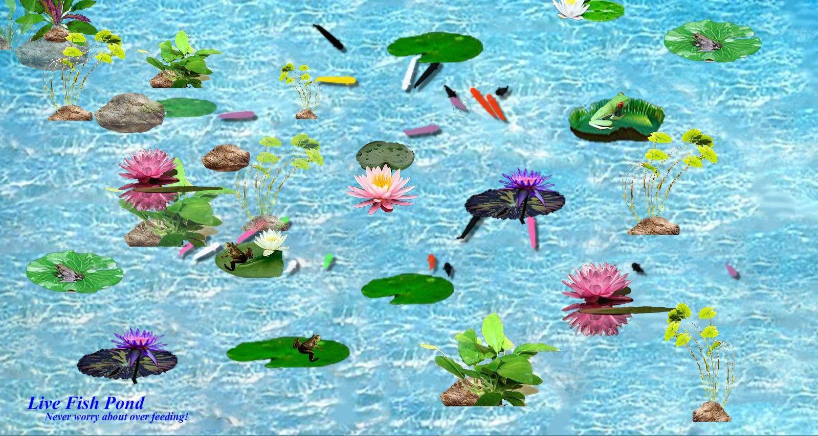 Live fish pond download 11street malaysia board games for Live fish games