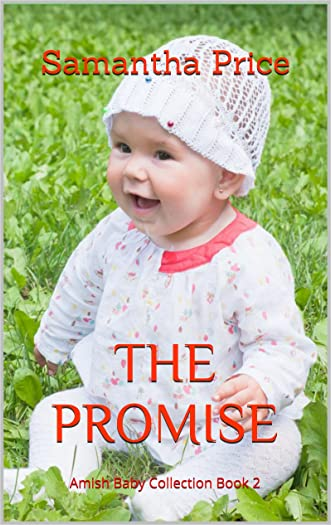 Amish Romance: The Promise: Clean Romance (Amish Baby Collection Book 2)
