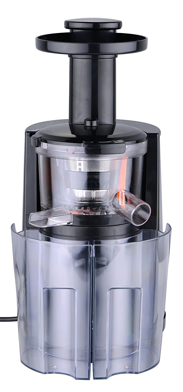 Champion Slow Masticating Juicer : Slow Masticating Juicer - Stanless Steel