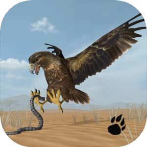 Desert Eagle Simulator by Wild Foot Games