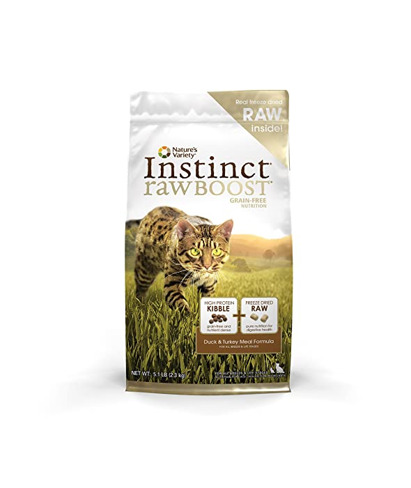 Grain Free Cat Food Diarrhea