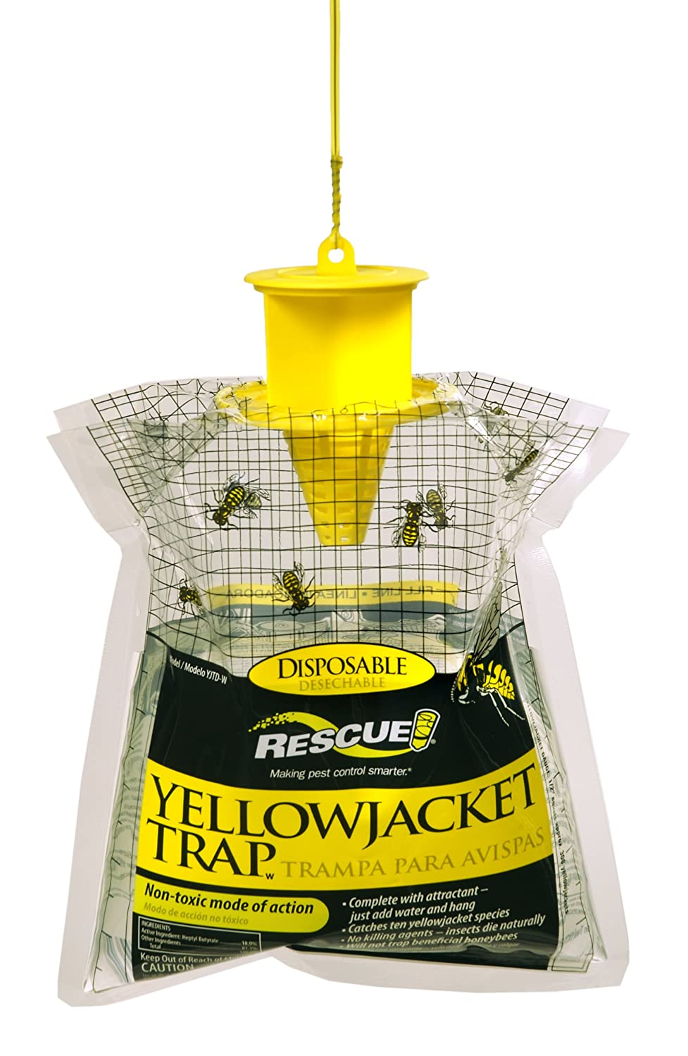 How to Control Yellow Jackets ~ advice tips and instruction at ...