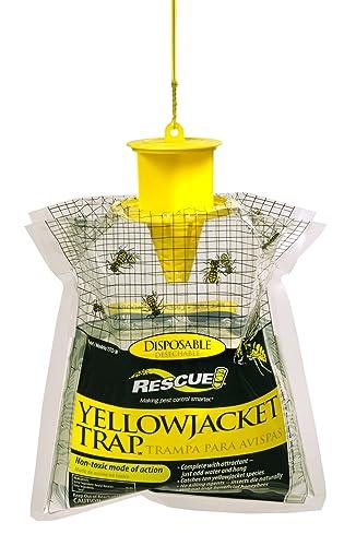 Yellowjacket Trap