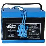 Peg Perego Battery 12 Volt (Drop Ship Pack) (Tamaño: Basic pack)