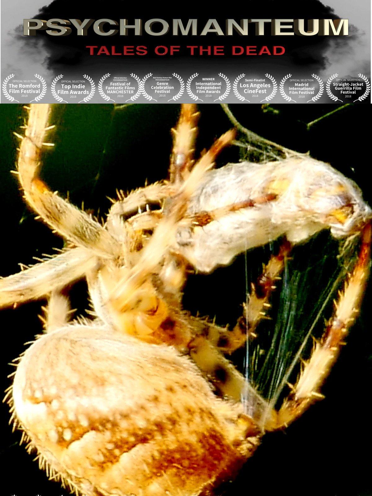 Psychomanteum on Amazon Prime Video UK