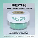 Prestige THERMOCHROMIC Pigment That Changes Color at 88°F (31 °C) from Colored to Transparent (Colored Below The Temperature, Transparent Above) Perfect for Color Changing Slime! (2g, Grass Green) (Color: GRASS GREEN, Tamaño: 2g)