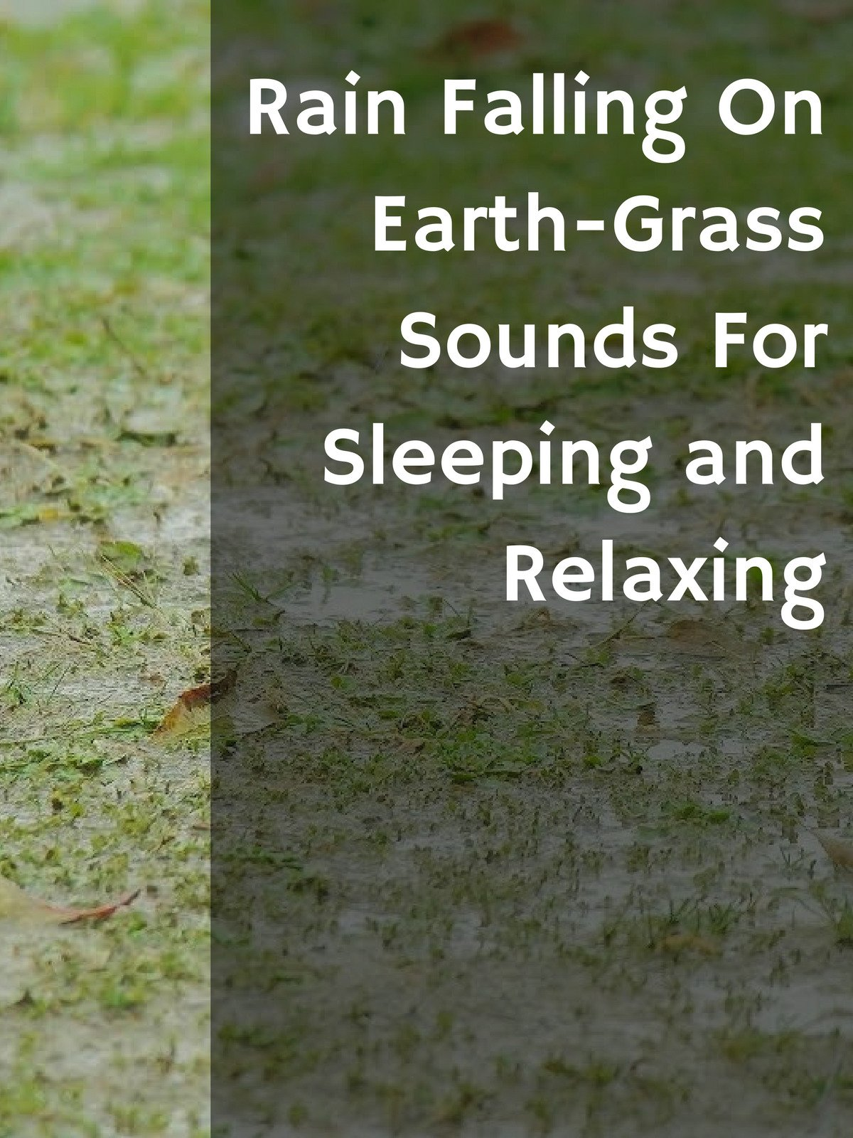Rain Falling On Earth-Grass Sounds For Sleeping, and Relaxing