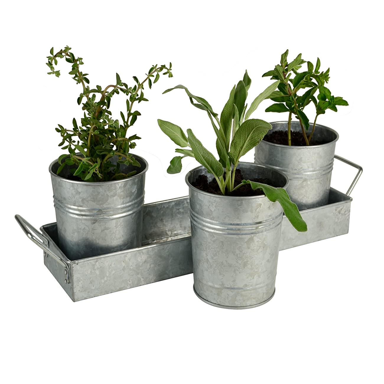 Oasis Picnic Caddy & Planter Set, Galvanized 2