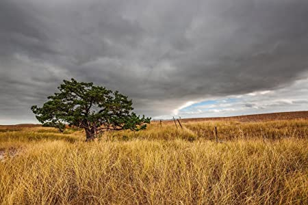 South Dakota Landscape Photograph