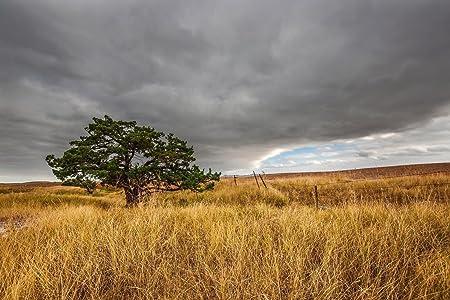 South Dakota Landscape Photograph