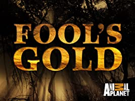 Fool's Gold Season 1
