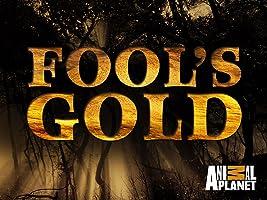 Fool's Gold Season 1