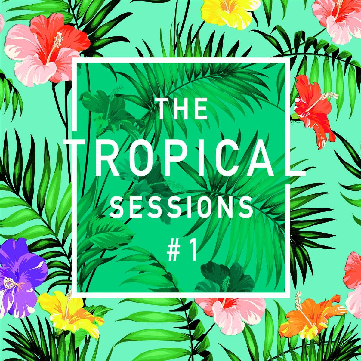 VA-The Tropical Sessions 1-DIGIPAK-2CD-FLAC-2015-VOLDiES
