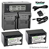 Kastar Fast Charger + 2X Battery for Panasonic VW-VBD29 VW-VBD58 VW-VBD78 AG-3DA1 AG-AC8 AG-DVC30 AG-HPX171 AG-HPX250 AG-HPX255 AG-HVX201 AJ-PCS060 AJ-PX270 AJ-PX298 HC-MDH2 HC-X1000 HDC-Z10000 HC-X1 (Tamaño: 2 batteries + 1 fast charger)