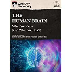 The Human Brain: What We Know (And What We Don't)
