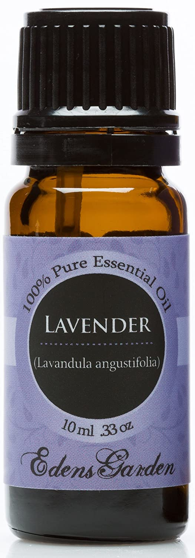 Lavender 100% Pure Therapeutic Grade Essential Oil- 10 ml
