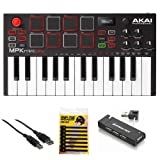 Akai Professional MPK Mini Play - Compact Keyboard and Pad Controller with Integrated Sound Module + Cable + 4-Port USB + Pack of Cable Ties
