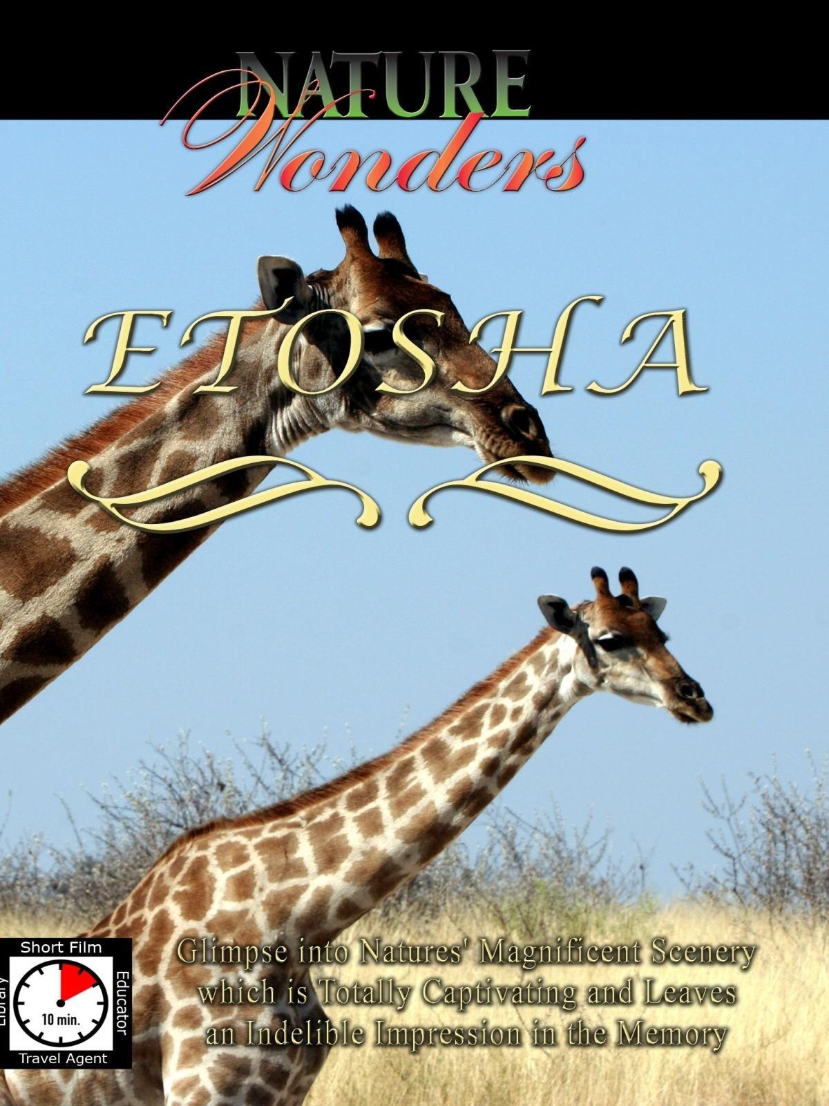 Nature Wonders - Etosha - Namibia