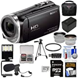 Sony Handycam HDR-CX455 8GB Wi-Fi HD Video Camera Camcorder with 64GB Card + Battery + Case + Tripod + LED Light + Microphone + Tele/Wide Lens Kit (Color: Clear)