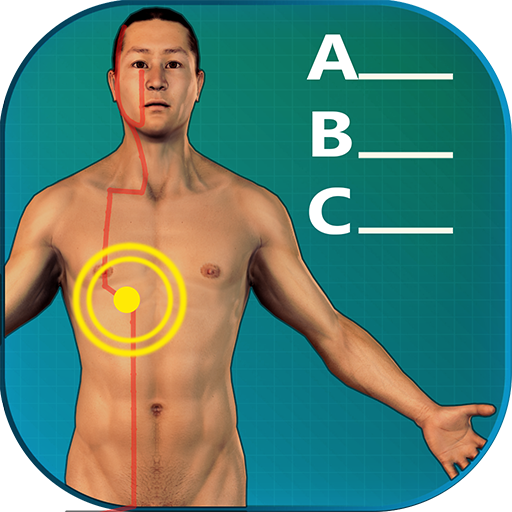 Acupuncture Quiz - Point Locations (Location Chart compare prices)