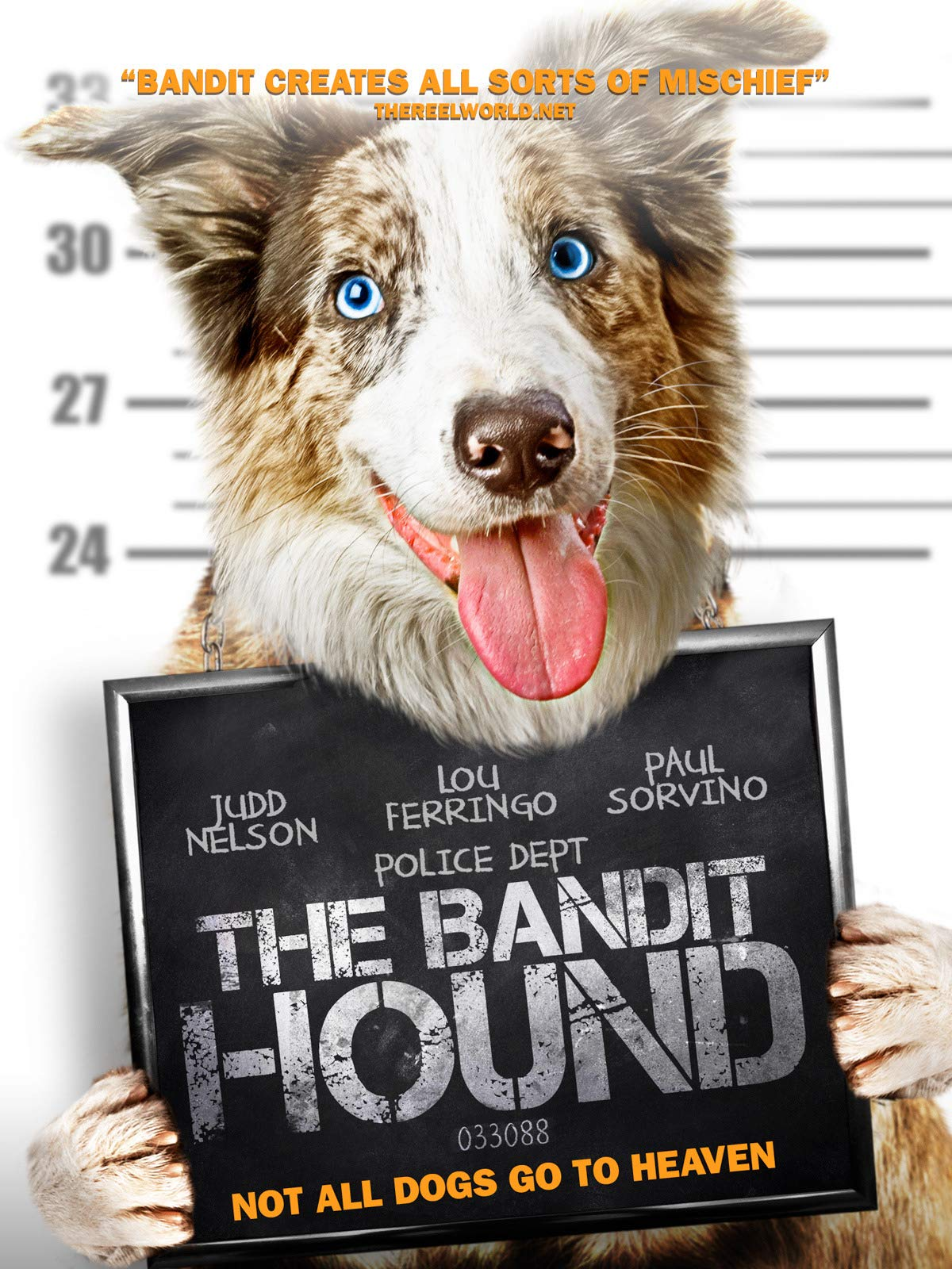 The Bandit Hound on Amazon Prime Instant Video UK