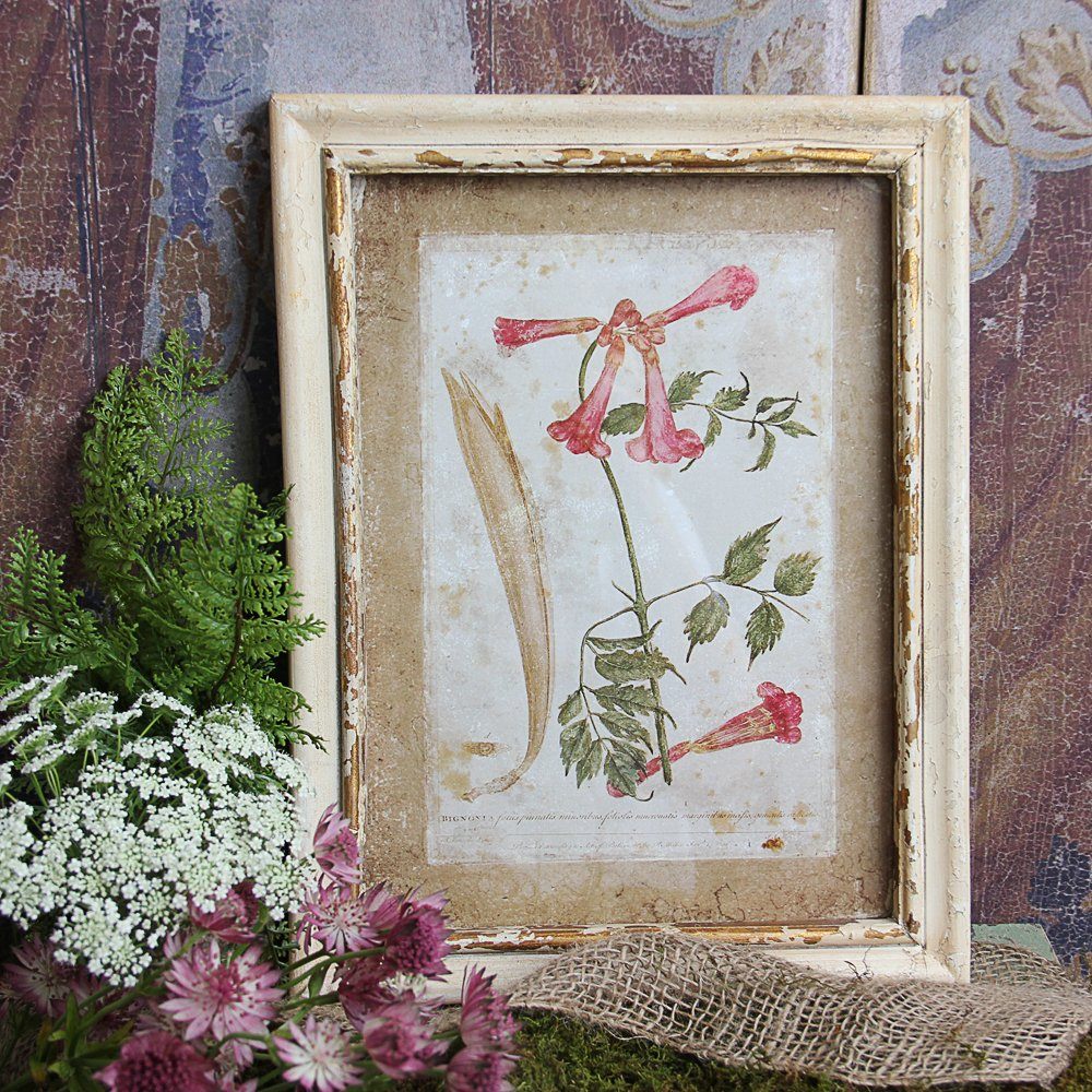 Wall Decor Shabby Chic : Squidoo page not found