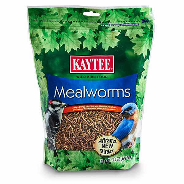 Kaytee 100505655 Mealworms, 17.6 oz, 17.6 Ounce