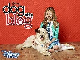 Dog With A Blog Season 2 [HD]