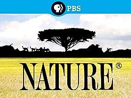 Nature Season 3