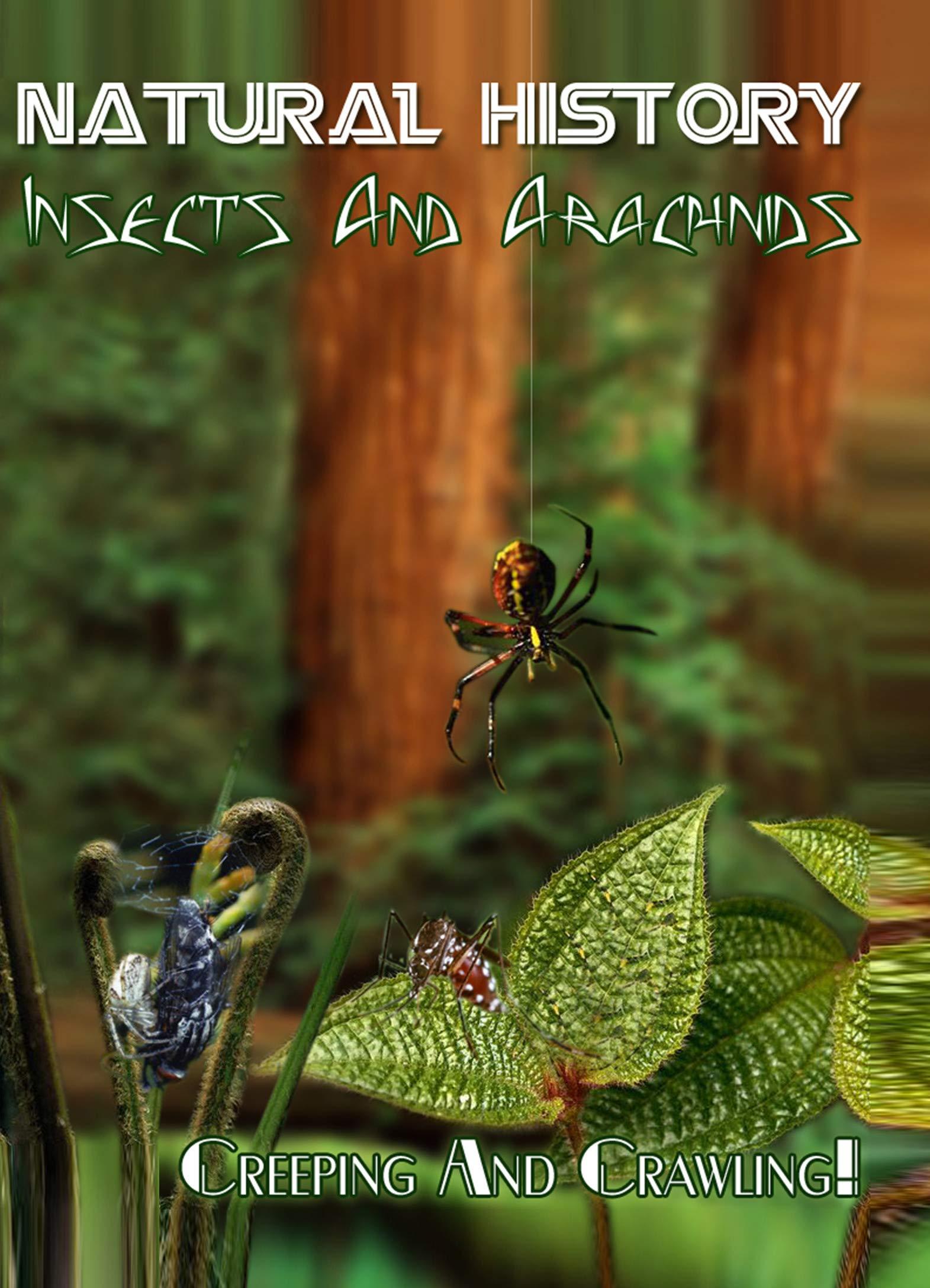 Natural History - Insects And Arachnids Creeping and Crawling! (1951-1969)