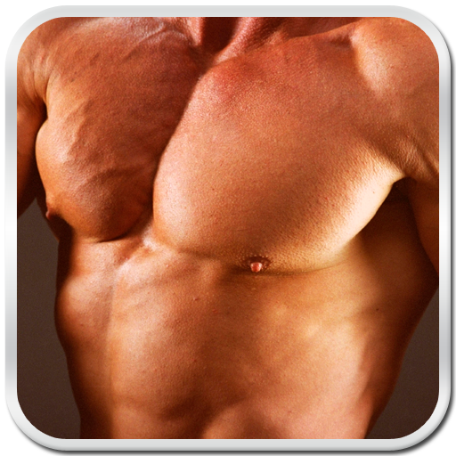 body building muscle and fitness gym exercise