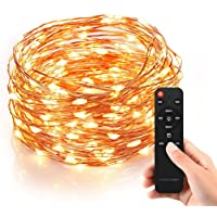 Homestarry HS-SL-010 Dimmable String Lights Pro with Wireless Handheld Remote Control