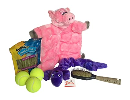 Happy Dog With Toy Happy Dog Bundle Keeps Your