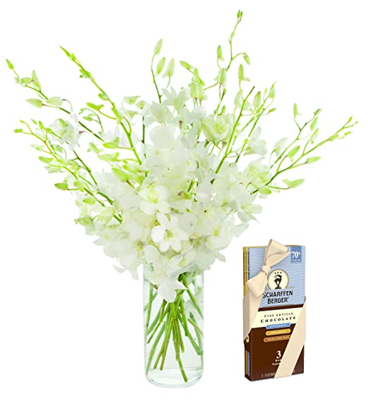 KaBloom   20 Stems Cloud Nine White Dendrobium Orchids & Scharffen Berger Chocolate   Vase   2.5 Pound