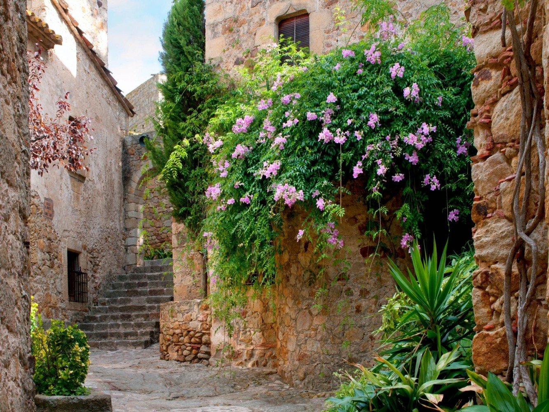 Fototapete Tapete Gasse Blumen Steine Mauer Foto 360 x 270 cm   Kritiken und weitere Infos