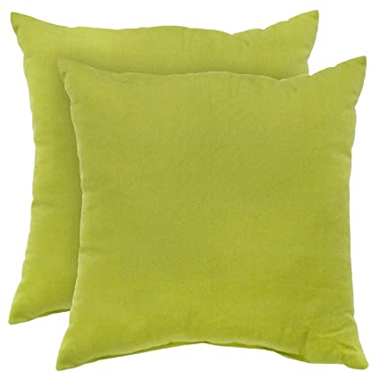 Greendale Home Fashions Indoor/Outdoor Accent Pillows, Kiwi, Set of 2