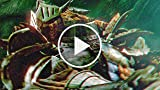 CGR Trailers - MONSTER HUNTER FREEDOM UNITE FOR IOS...