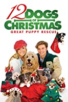 12 Dogs Of Christmas: Great Puppy Rescue [HD]