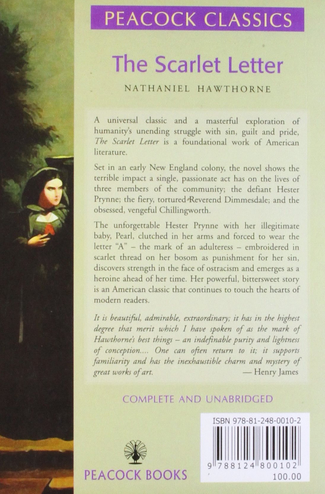 an analysis of the heroine in the novel the scarlet letter by nathaniel hawthorne