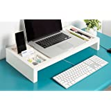 Kate and Laurel - Briggs Wooden Laptop Monitor Stand and Desktop Organizer, White