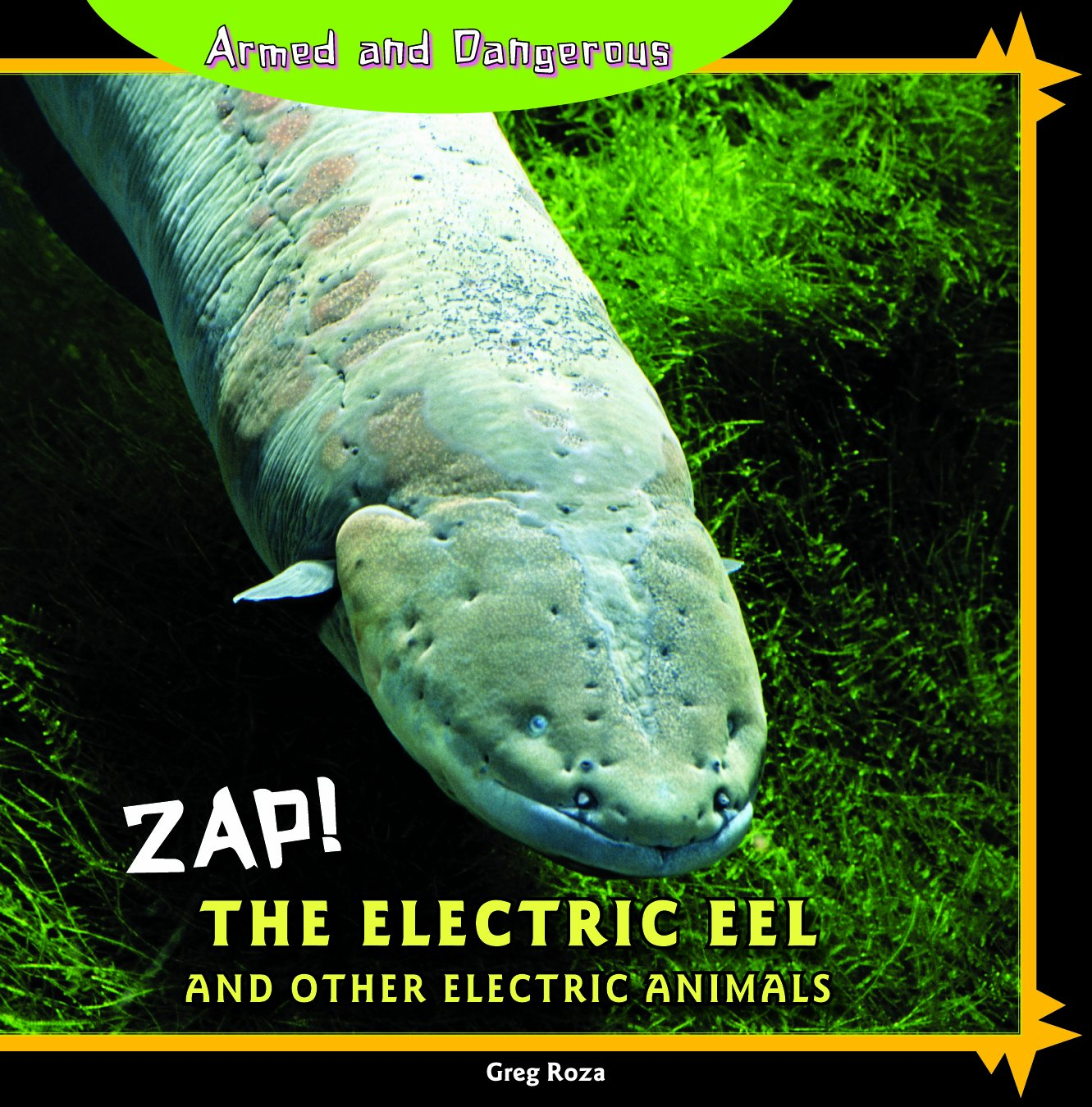 Eel Electric City The Electric Eel And Other